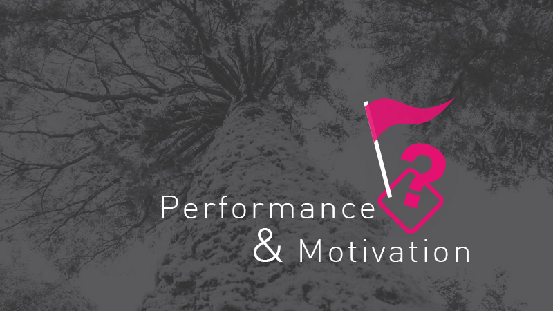 performance-motivation